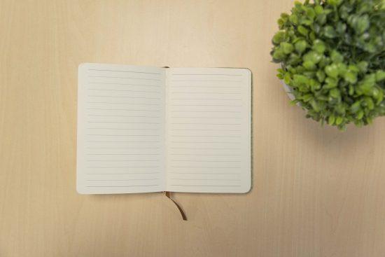 Journal starter